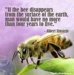 save-the-bees-albert-einstein